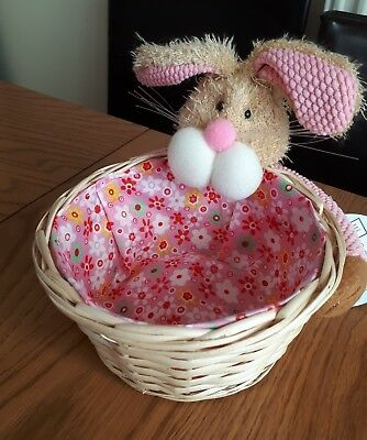 Pink easter baby girls gift baby shower bunny basket new 199 pink easter baby girls gift baby shower bunny basket new negle Image collections
