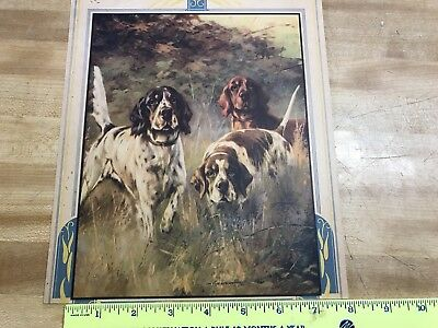 Hunting Calendar Top 3  Hunting Dogs 1 At Point