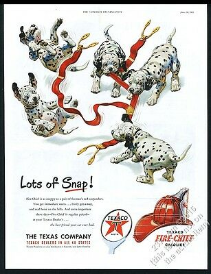 1951 Dalmatian puppy dogs playing with fireman suspenders Texaco print ad