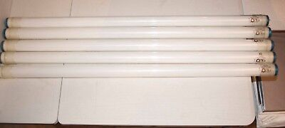 Set Of 5 3ft Kino Daylight Tubes - BARGAIN