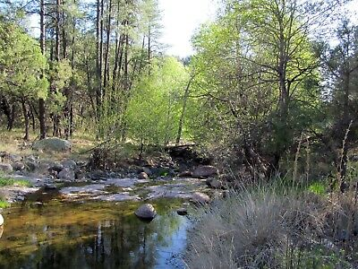 Gold Mining Claim New Mexico Year Round Bear Creek Silver Placer Mine - 20 acres