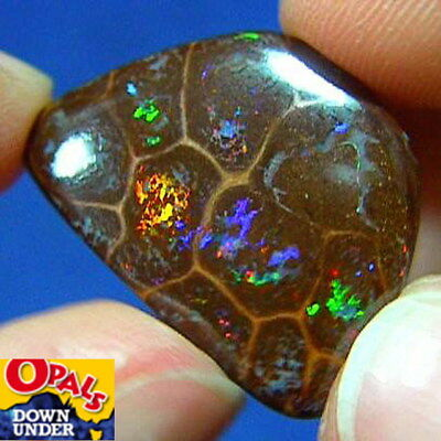 Rolling Gem Colors * 23ct Natural Australian Solid Matrix Boulder Opal * Video