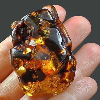 32.8g Natural Baltic FLASHING FLOWER AMBER Inclusion Collectible MSFY649