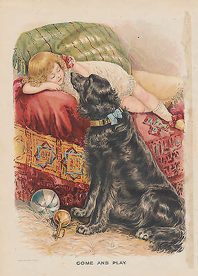 Black Newfoundland Dog Newfie With Victorian Girl Lithograph Antique Print