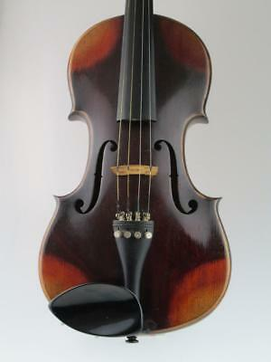 Rare 19th Century Russian 4/4 Violin By Rigart Rubus St.Petersburg Circa 1850
