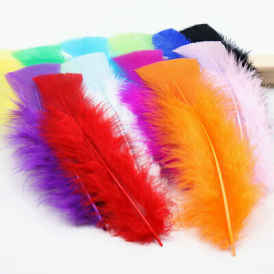100pcs Beautiful high quality feather pheasant feather 10-16cm decorative