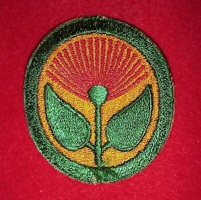 Vintage Original WW2 WWII US Army Patch Hawaiian Defense Fully Embroidered Rare