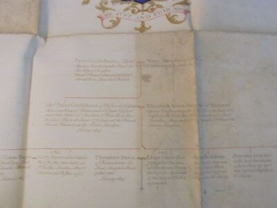 Pedigree In Vellum Of Guillebaud Family Countersigned By Bluemantle 1847
