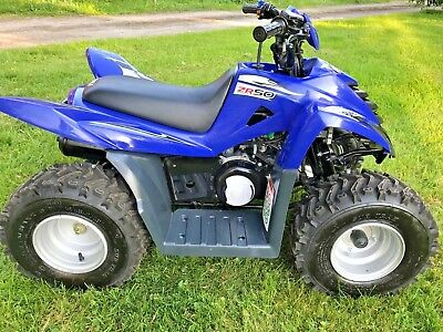 Quadzilla Zr50 Childrens Quadbike In Outstanding Condition Suit 6 To 12 Year Old