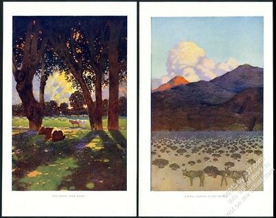 1902 Maxfield Parrish The Desert With Water and Formal Growth vintage print