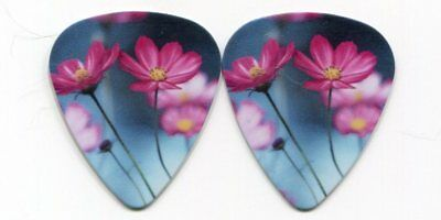 FLOWERS Novelty Guitar Pick!!! #2