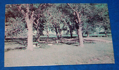 Picnic And Camp Grounds Lake Marvin Texas Postcard, Unused
