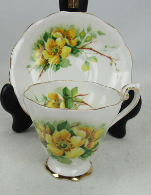 Royal Standard WILD ROSE Bone China Tea Cup & Saucer