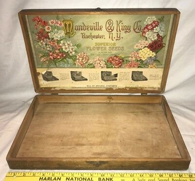 Antique Mandeville King Flower Garden Seed Large Wood Box Vintage Country Store