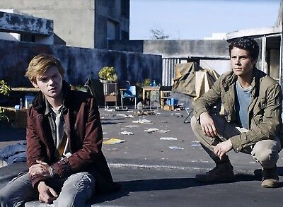 Photo Le Labyrinthe -Thomas Brodie-Sangster, Dylan O'brien Format 11X15 Cm #2