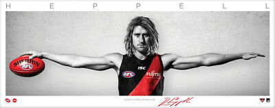 Dyson Heppell Essendon Bombers Signed Signature Series Wings Afl Print Daniher