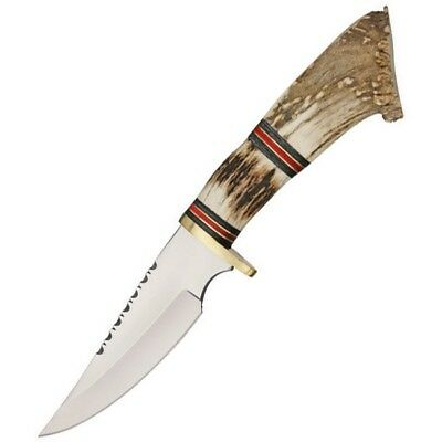 Unbranded DH-7982 Crown Stag Handle Hunter Fixed Blade Knife Satin Drop Point