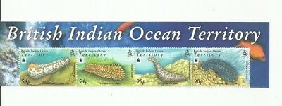 British Indian Ocean Territory Wwf Scott 361-4 Mnh