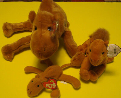 daaeb453eb7 TY BEANIE BUDDY - HUMPHREY the CAMEL 1998 - Retired (Lot of 3 Camels ...
