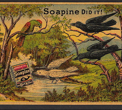 Black Raven 1800's Parrot Soapine Soap Before After Crow Victorian Ad Trade Card
