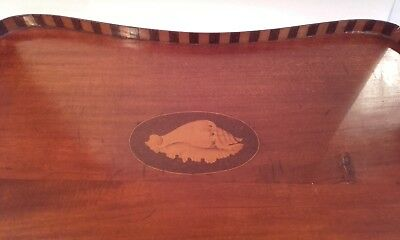 Antique Edwardian Shell inlay tray { serving / butlers inlaid } brass handles.