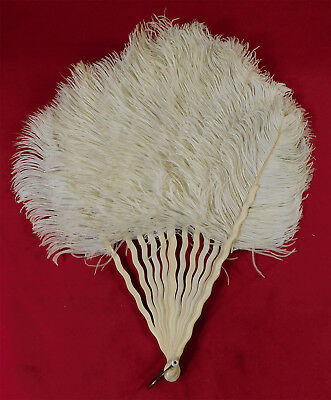 Vintage Edwardian White Ostrich Feather Carved Celluloid Wavy Sticks Folding Fan
