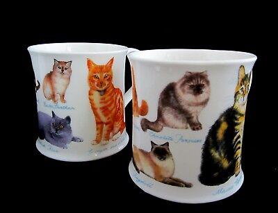 2 DUNOON CAT SHOW MUGS Bone China by Richard Partis Made in England