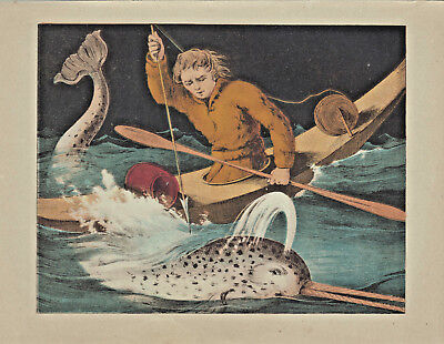 Early Whaling Whaler In Kayak Harpoon Narwhal Whale Antique Lithograph 1865