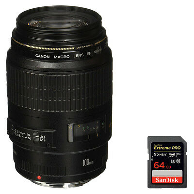 Canon EF 100mm F/2.8 Macro Lens + Sandisk 64GB Memory Card