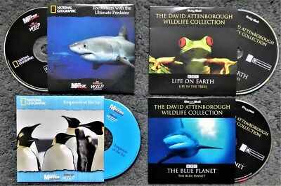 Bundle Lot of 4 Promo DVDs - 2 National Geographic and 2 David Attenborough
