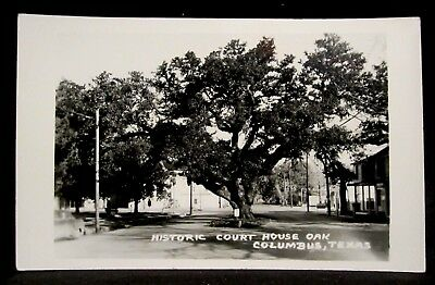 RPPC COLUMBUS, TX, Court House OAK TREE, Colorado County, Texas REAL PHOTO pc