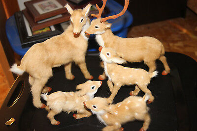 Family Set of 5 Life Like Goat Fur Collectible Deer Figurines Fawn Buck Doe