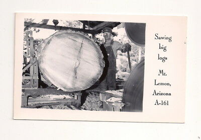 Mt. Lemmon - AZ Arizona Sawing Big Logs Real Photo Postcard Rppc