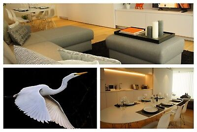 TWH Detail-clean service of all areas in TWH apartment