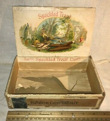 Antique Speckled Trout Wood Cigar Box Vintage Tobacco Fish Fisherman Rod Stream