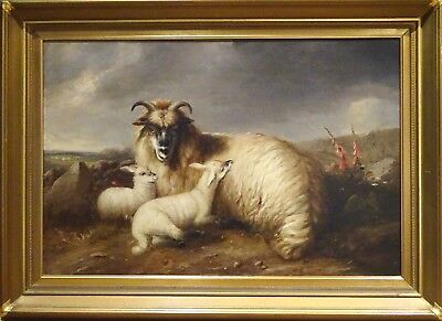 Fine Large 19th Century English Sheep & Lambs Landscape Antique Oil Painting