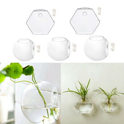 Wall Hanging Glass Flower Vase Hydroponic Terrarium Container Tabletop Decor