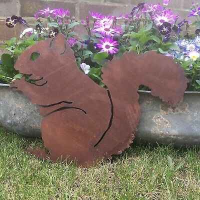 Rusty SQUIRREL Sign Metal Front Home Garden Ornament feature plaque decoration