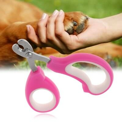 Small Animals Nail Clippers Pets Puppy Kitten Cutter Scissors Grooming Claw