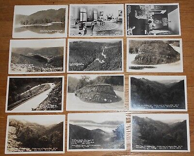 Lot of 12 Real Photo Postcards West Virginia Cheat Mt WV etc RPPC