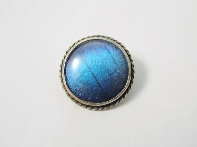 Vintage sterling Silver rope edged butterfly wing cabochon shaped brooch England