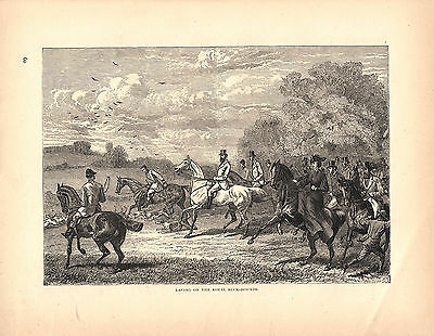 Equestrian Fox Hunting Full Cry Dogs Horses Ladies Sidesaddle Antique Print 1873