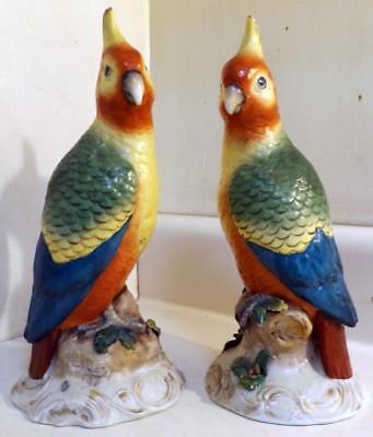 "Opposing Pair 9¾"" Antique Porcelain Crested Parrot Figurines Staffordshire?"