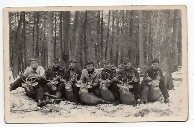 Wisconsin,deer Hunting,seven Trophy Bucks,hunters,post 1927 Azo Rppc