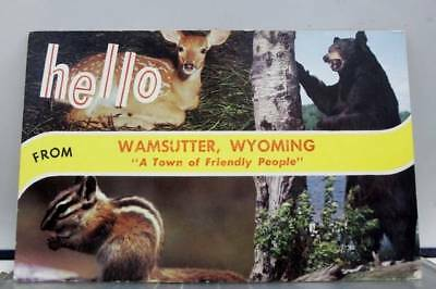 Wyoming WY Wamsutter Friendly People Hello Postcard Old Vintage Card View Post