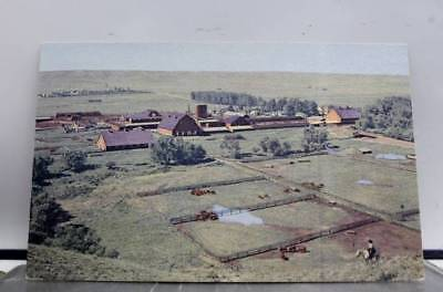Wyoming WY Hereford Ranch Postcard Old Vintage Card View Standard Souvenir Post