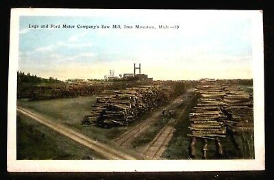 FORD MOTOR CO SAW MILL, Logs, Plant, IRON MOUNTAIN, MI Michigan