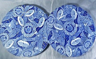 2 Spode Blue Room Collection Sunflower Lunch Plates England