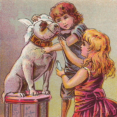 Dr Thompsons 1800's Eye Water Remedy Playing Veterinary Dog Doctor Pit Bull Card