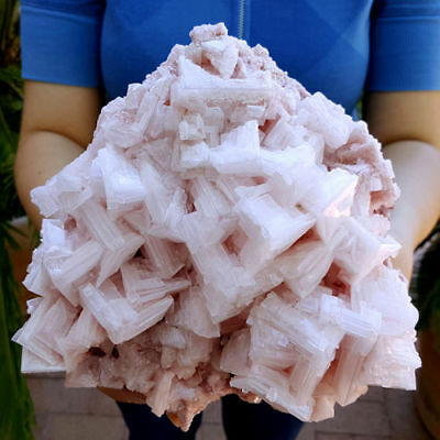 Very Fine Big 7 1/2 Inch Gallery Size Pink Halite Crystal Cluster